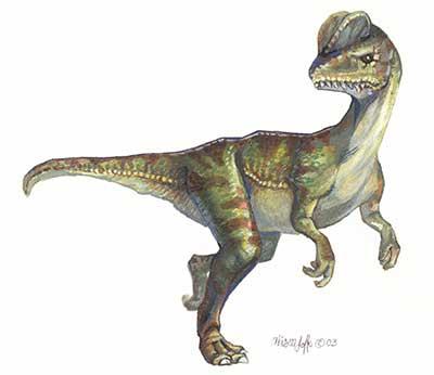 Dilophosaurus: