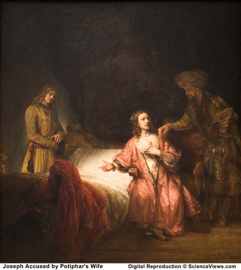 an analysis of rembrandt joseph accused by potiphars wife Joseph and potiphar's wife is a 1634 etching by rembrandt (bartsch 39) it  depicts a story from  citing his garment as evidence, potiphar's wife falsely  accused joseph of having assaulted her, and he was sent to prison  a context  for rembrandt's unidealized interpretation of the nude was proposed by kenneth  clark,.